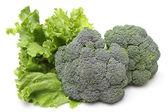 Broccoli and lettuce — Stock Photo