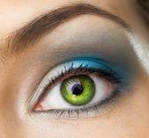 Beauty eye — Stock Photo