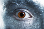 Brown eyes male closeup — Stock Photo
