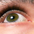 Men's beautiful green eyes close up — Stock Photo #4410548