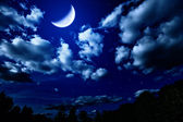 Night summer forest with and bright large moon in dark sky — Stock Photo