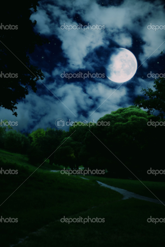 Landscape with night summer park with green trees and bright large moon in the dark sky with clouds and stars  Stock Photo #4963936