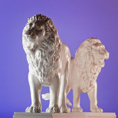 Two lions — Stock Photo