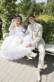 Bride and Groom Sitting On A Park Bench — Stock Photo
