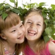 Two cheerful little girls of the friend on a white background — Stock Photo