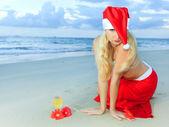 Natale tropicale — Foto Stock