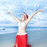 tropické Vánoce — Stock fotografie