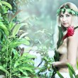 Stock Photo: Forest nymph