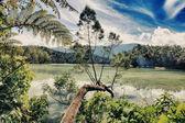 Telaga warna озеро — Стоковое фото