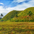 Chocolate Hills — Stockfoto #5259250