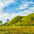 Chocolate Hills — Stock Photo #5356644