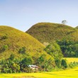 Chocolate Hills — Stock Photo