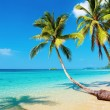 Stock Photo: Tropical beach, Kood island, Thailand
