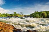 Nile River — Stock Photo