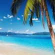 Tropical beach - Stockfoto