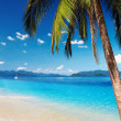 Tropical beach — Stock Photo #4688649