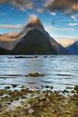 Fiord Milford Sound, New Zealand — Stock Photo