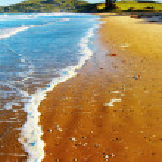 Coastal view, New Zealand — Stock Photo #4714969
