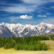 Mountain landscape — Stock Photo #4812584