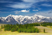 Mountain landscape — Foto Stock