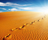 Footprints on sand dune — Stock Photo