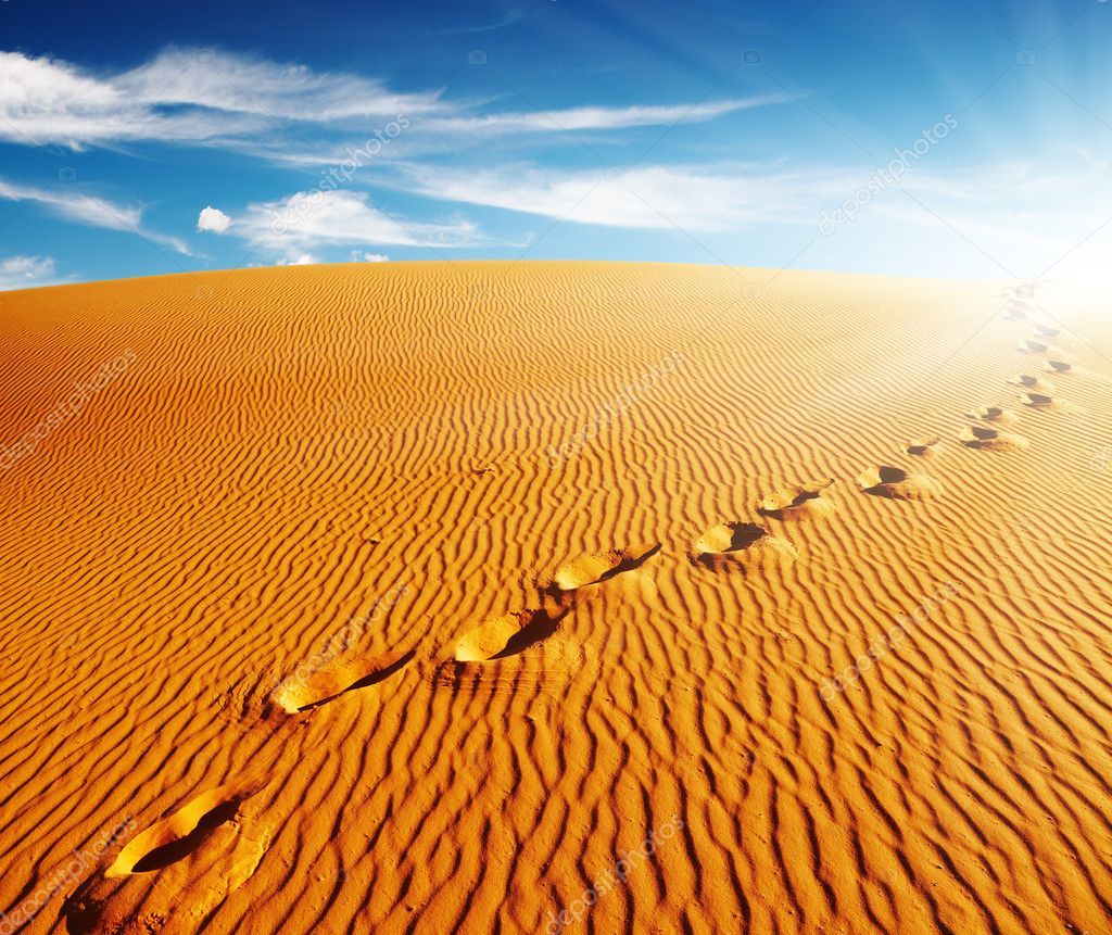 Footprints on sand dune, Sahara Desert, Algeria — Stock Photo #5352807