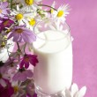 Chamomile and milk in a glass - Stock Photo
