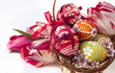 Easter eggs and flower — Stock Photo