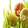 Stock Photo: Easter eggs and green grass