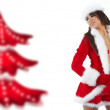Beautiful sexy girl wearing santa claus clothes — Stock Photo #4039882