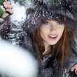 Beautiful young womin winter forest — Stock Photo #4816115