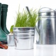 Garden boots with tool and watering — Stock Photo #5031854