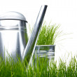 Watering can with grass and garden tools on white — Stock Photo #5032312