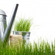 Garden tools and watering can with grass on white — Stock Photo #5032368