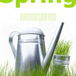 Watering can with grass and garden tools on white — Stock Photo