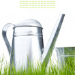 Watering can in grass with white background — Stock Photo #5032668