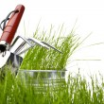 Garden tools with grass on white — Stock Photo