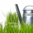 Royalty-Free Stock Photo: Watering can in grass with white background