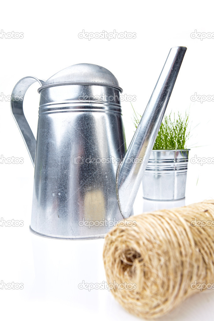 Garden tools and watering can with grass on white  — Stock Photo #5032044