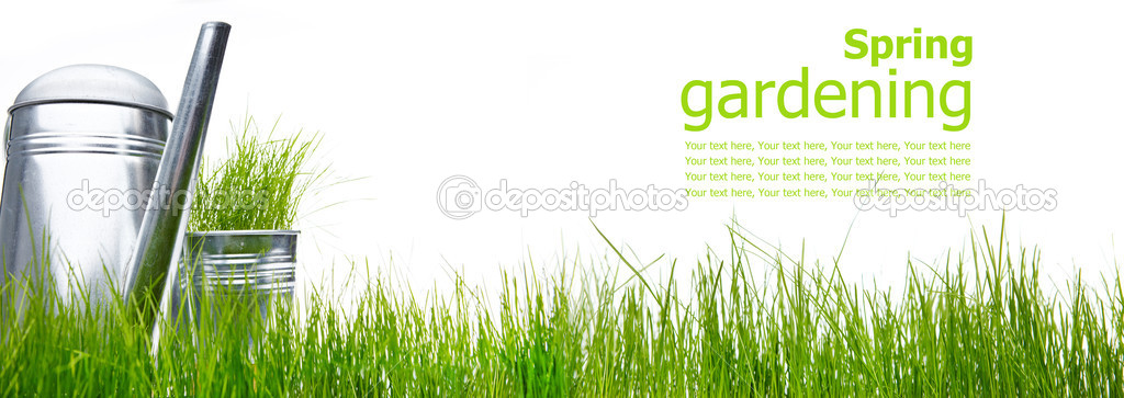 Watering can with grass and garden tools on white  — Stock Photo #5032326