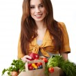 Woman holding a bag full of healthy food. shopping . - 图库照片