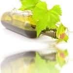 Bottle wine — Stock Photo