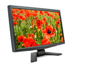 Monitor and poppies. — Stock Photo