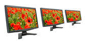 Monitors and poppies. — Stock Photo