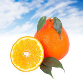 Fresh orange. — Stock Photo