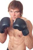 De boxer — Stockfoto