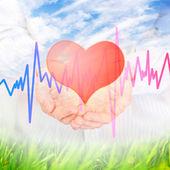 Heart. — Stock Photo