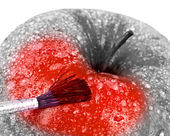 Red apple and brush. — Stock Photo