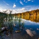 Lago outonal — Foto Stock #4008018
