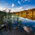 Autumnal lake — Stock Photo #4008018
